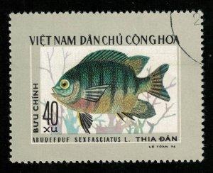 Fish, 40xu (T-5704)