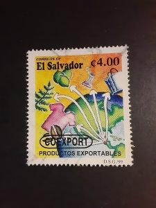 :Salvador #1515               Used
