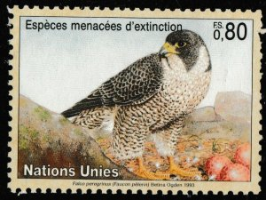 United Nations Endangered Species Faucon Pelerin FS 0.80 single MNH 1993
