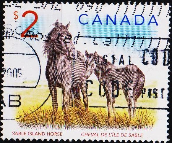 Canada. 2000? $2 Fine Used