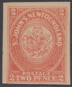 CANADA NEWFOUNDLAND 1860 Sc 11 ONEGLIA FORGERY UNUSED F,VF