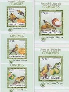Comoro Islands 2009 - 5 S/S Animals Singing Birds Oriolus Fruit Fauna Stamps MNH