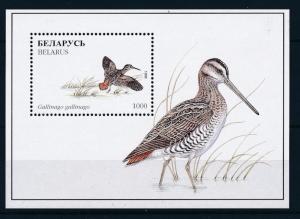 [27246] Belarus 1996 Birds Vögel Oiseaux Ucelli  MNH Sheet