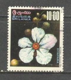 SRI LANKA Sc# 498 USED FVF Wormia Triquetra Flowers