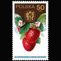 POLAND 1974 - Scott# 2049 Strawberries 50g NH