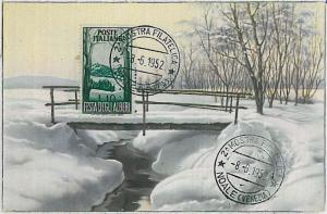 MAXIMUM CARD : Nature TREES  - ITALY Italia 1952