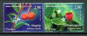 Bosnia & Herzegovina Fruits Stamps 2019 MNH Strawberries Trees Flowers 2v Set