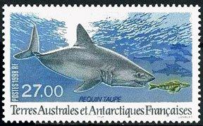 Scott #242 Mole Shark MNH