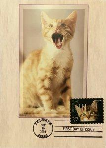 HNLP Hideaki Nakano 3670 Spay & Neuter Cat Greeting Card Birthday Cake