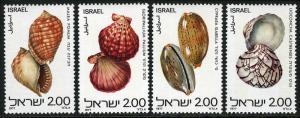 Israel 678-681, MNH. Red Sea Shells, 1977