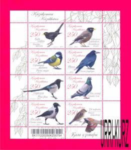 KAZAKHSTAN 2011 Nature Fauna Bird Pigeon Crow Magpie Jackdaw Sparrow Titmouse ms