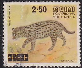 Sri Lanka 594 Used 1981 Fishing Cat O/P