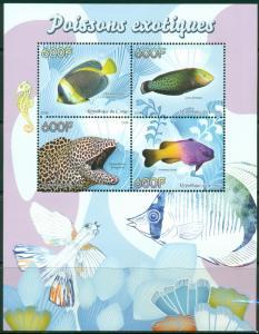 CONGO SHEET EXOTIC FISHES FISH MARINE LIFE