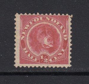 Newfoundland, Sc 56 (SG 49), MHR