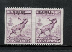Newfoundland #257b Extra Fine Never Hinged Imperf Between Pair **With Cert.**
