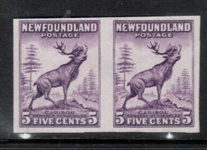 Newfoundland #191d Very Fine Mint Imperf Pair Unused (No Gum)