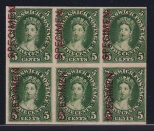 New Brunswick Sc #8pii-iv (1860) Victoria SPECIMEN Plate Proof Varieties Block