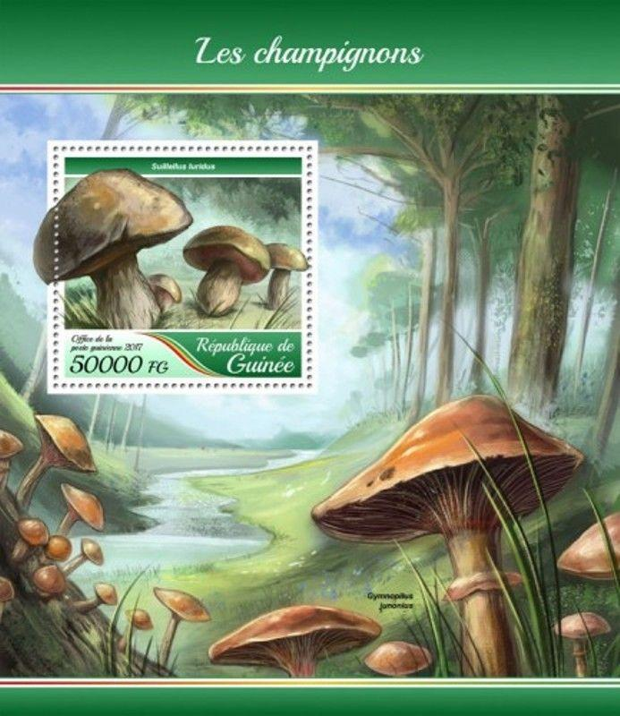 Guinea - 2017 Mushrooms - Stamp Souvenir Sheet - GU17421b