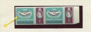 Virgin Is - Scott 161 - ICY - Broken Leaves-1965 - MNH - Joined Pair 1c Stamps