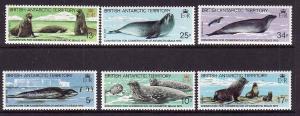 British Antarctic Territory-Sc#96-101- id2-unused NH set-Antarctic Seals-Marine