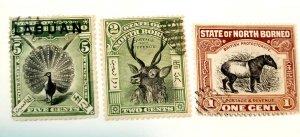 Norh Borneo 1894-1907