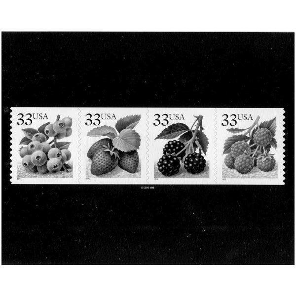 US #3302-5 Berries Horiz. Strip Photo of Essay
