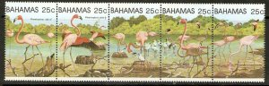BAHAMAS SG617a 1982 GREATER FLAMINGOS MNH