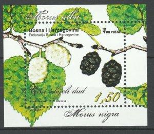 Bosnia and Herzegovina 2017 Fruits MNH Block