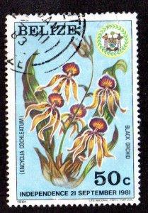 BELIZE 596 USED SCV $12.50 BIN $5.00 FLOWERS