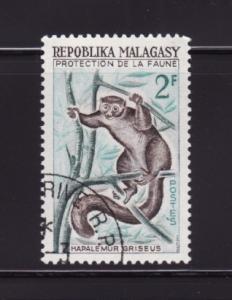 Malagasy Republic 321 U Animals, Gray Lemur (A)