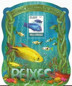 Mozambique MNH S/S Fish Of Africa Marine Life 2015