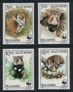 Bulgaria WWF Common Hamster 4v SG#3976-3979 MI#4124-4127 SC#3831-3834