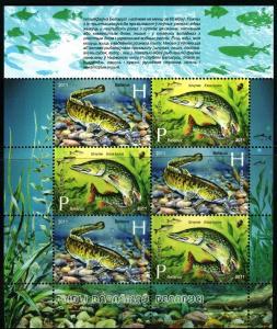 2011Belarus870-71KLFish reservoirs of Belarus. (Burbot and pike)