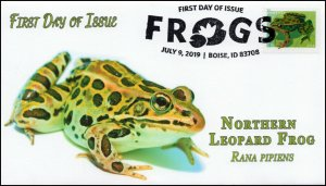 19-178, 2019, Frogs, Pictorial Postmark, First Day Cover, Northern Leopard Frog