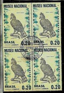 #1006 BRASIL BRAZIL1968 FAUNA BIRD BLOC x4 FIRST DAY SPECIAL POSTMARK