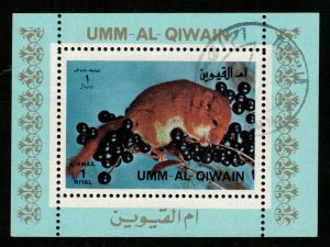 Squirrel, 1 Riyal, Block  (T-6001)