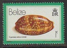 1980 Belize - Sc 471 - MH VF - Cypraea Zebra