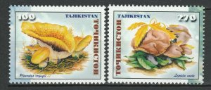 Tajikistan 1999 Mushrooms 2 MNH stamps