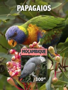 MOZAMBIQUE - 2019 - Parrots - Perf Souv Sheet - MNH