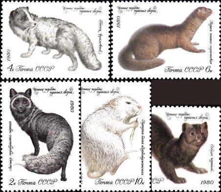 Russia MNH 4838-42 Fur Animals 1980