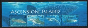 Ascension Sharks 4v Top strip SG#999-1002