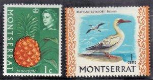 MONTSERRAT SC# 158+231  MNH 1965-74 1c  SEE SCAN