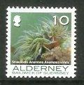Alderney - 2006 Corals and Anemones (10p) (MNH)