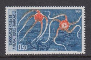 French Southern & Antarctic Territories    #125    mnh       cat $0.55