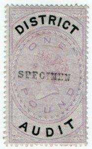 (I.B) QV Revenue : District Audit £1 (specimen)