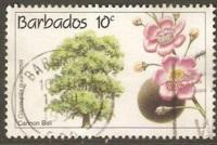 Barbados Used Sc 822 - Cannon Ball (Trees & Plants)