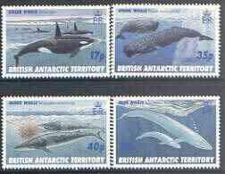 British Antarctic Territory 1996 Whales perf set of 4 unm...
