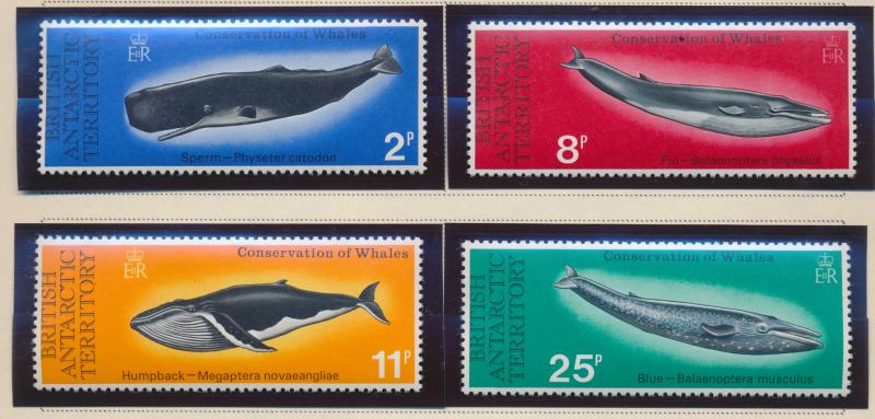 British Antarctic Territory (B.A.T.) Stamps Scott #64 To 67, Mint Never Hinge...