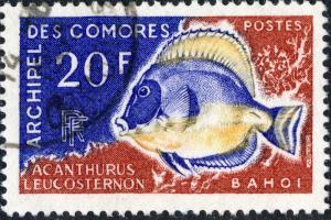 COMORES - 1968 - Yv.47/Mi.88 20fr Acanthurus Leucosternon - Obl. TB