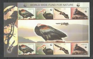 QQ495 LESOTHO WWF FAUNA BIRDS VULTURES 1KB MNH STAMPS